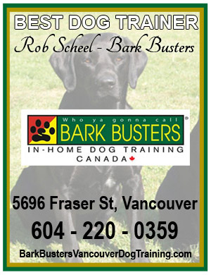 Bark Busters Rob Scheel is the Best Dog Trainer ~ Best in BC